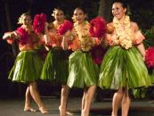 Voyagers of the Pacific Luau